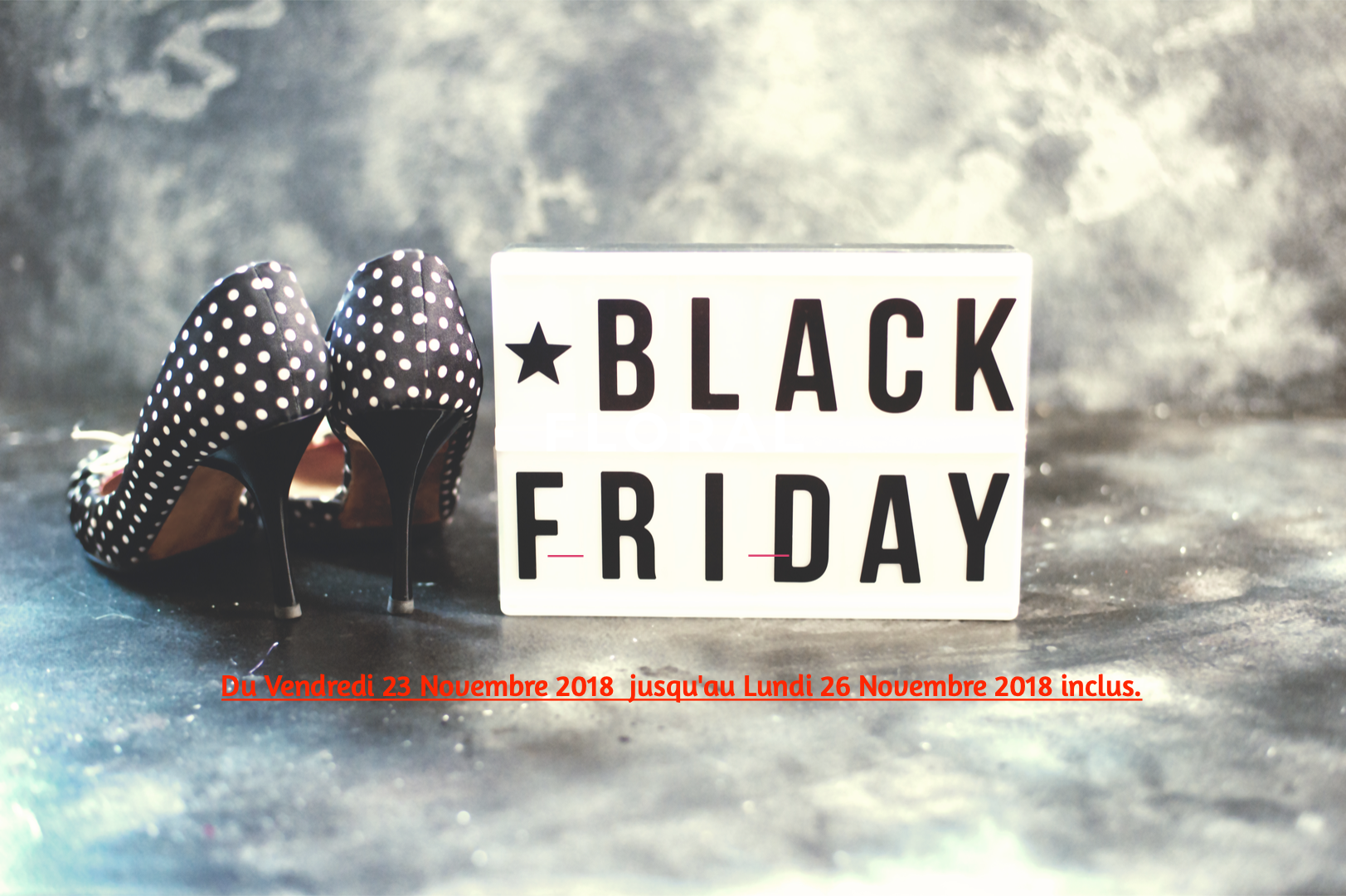 BLACK FRIDAY NOVEMBER